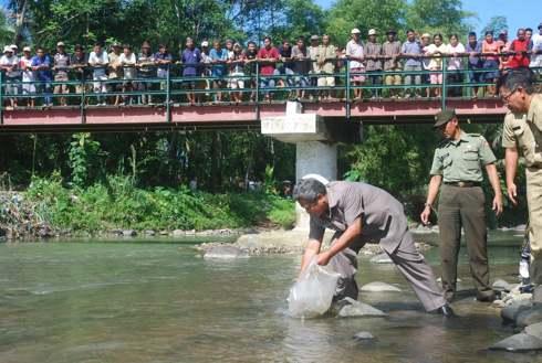 Tebar Benih Ikan di Purbalingga